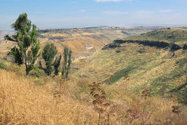 1chateau_golan_canyon_near_winery