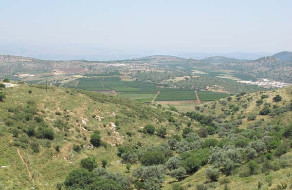 2ramot_naftaly_kedesh_valleyvineyards
