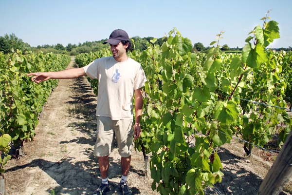 1courtois_claude_etienne__romorantin_vineyard