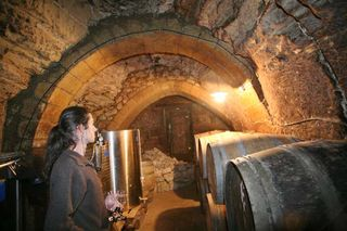 1xavier_caillard_cellar_different_vaults
