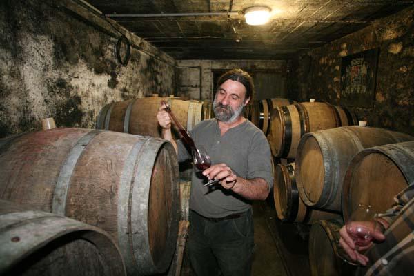 1cousin_olivier_wines_cellar_cab_franc