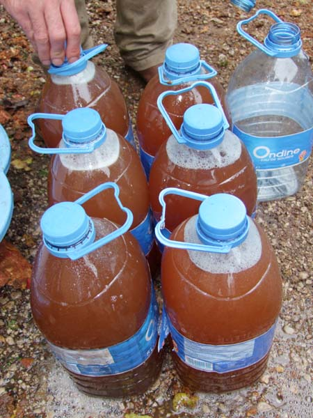 1cider_apples_pressing_5liter_bottles