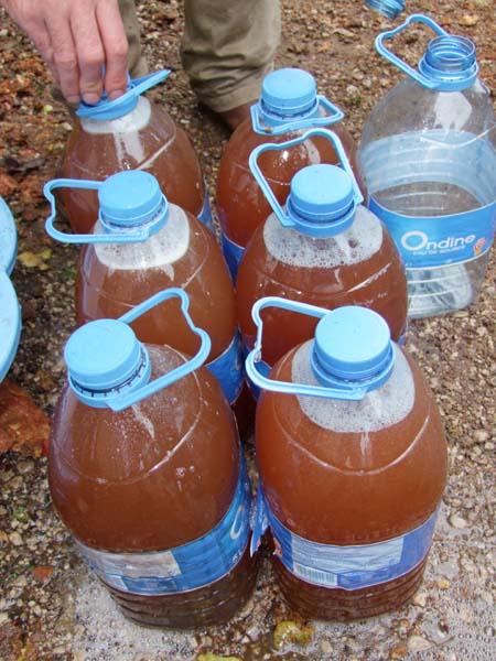 1cider_apples_pressing_5liter_bottles