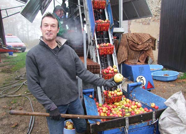 1cider_apples_pressing_showing_big_apple