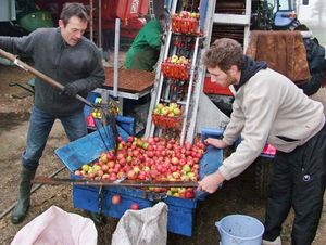 1cider_apples_pressing_fourche