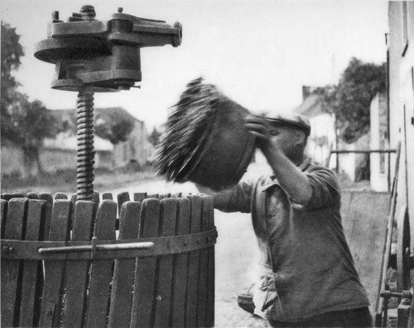 1_1930_vinif_rue_gevrey_chambertin