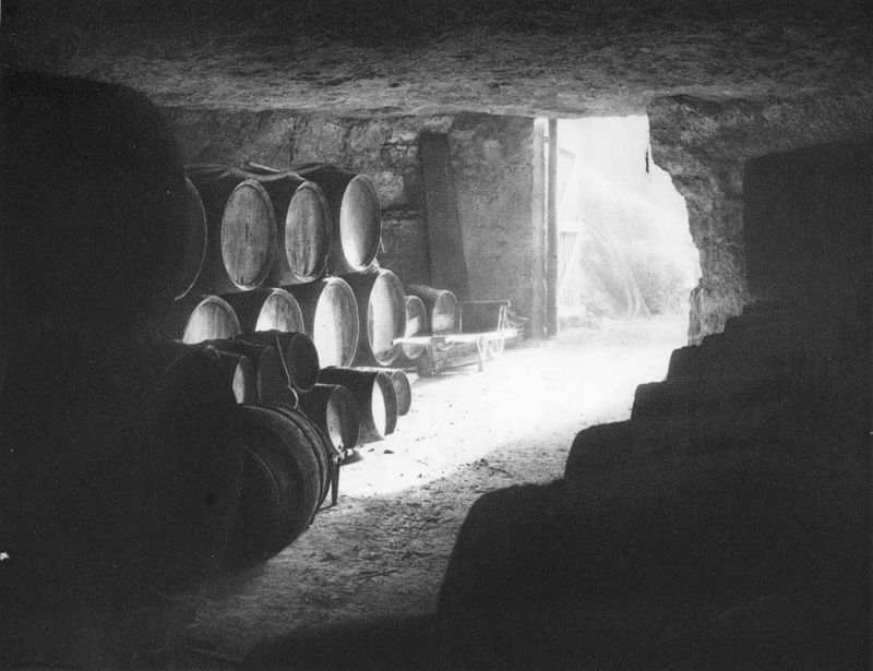 1_1930_vinif_cave_touraine