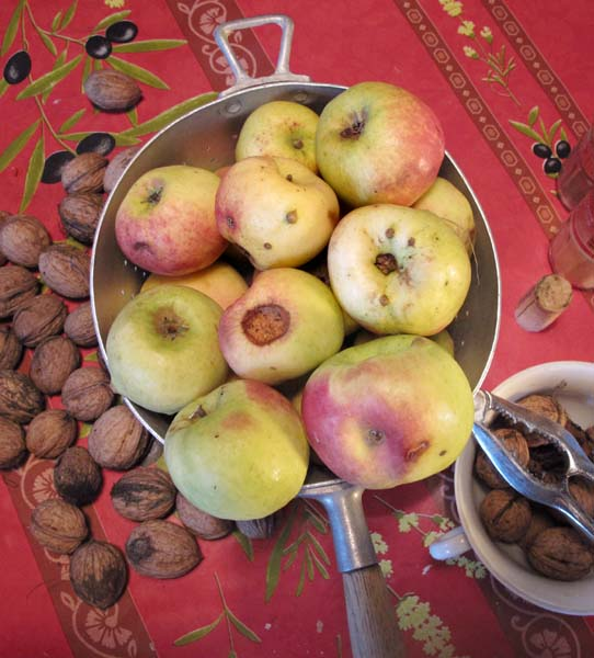 1real_apples_old_variety_organic