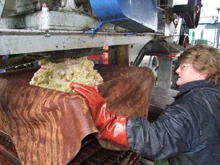 1cider_apples_pressing_top_layers