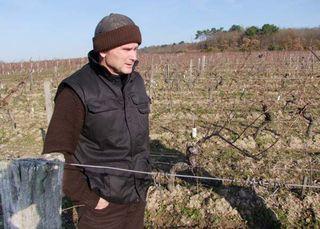 1Pierre_Breton_Clos_Senechal_vineyard