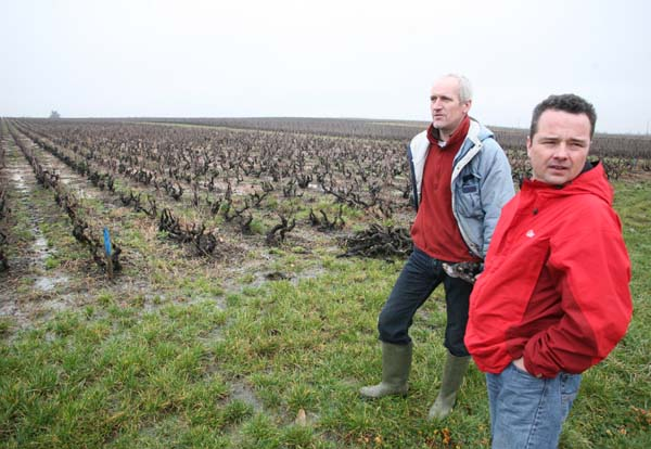 1christophe_pacalet_jules_chauvet_vineyards