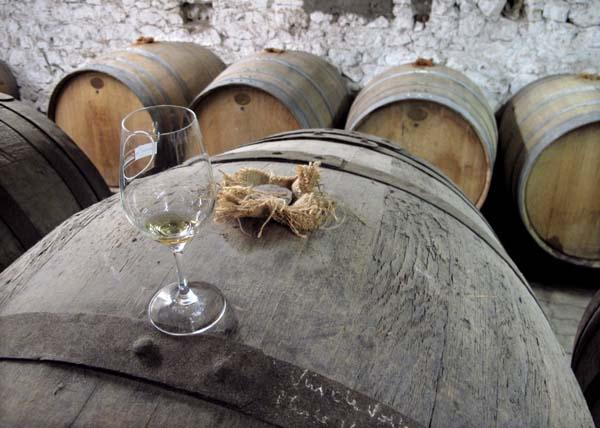 1plageoles_gaillac_veil_wine