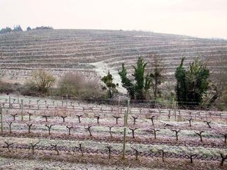 1rablay_sur_layon_vineyard_slopes