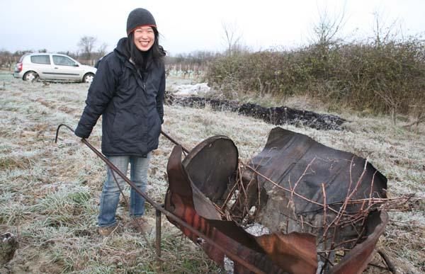 1mai_kenji_hodgson_wheeled_stove_pruning