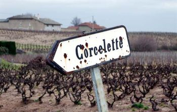 1corcelette_sign_morgon