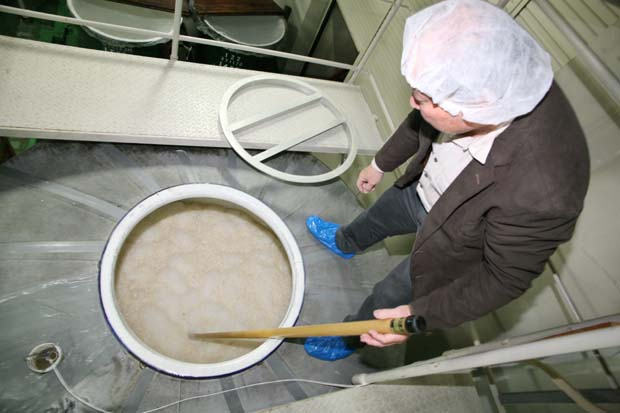 1saito_shuzo_brewery_fermenting_rice_foam