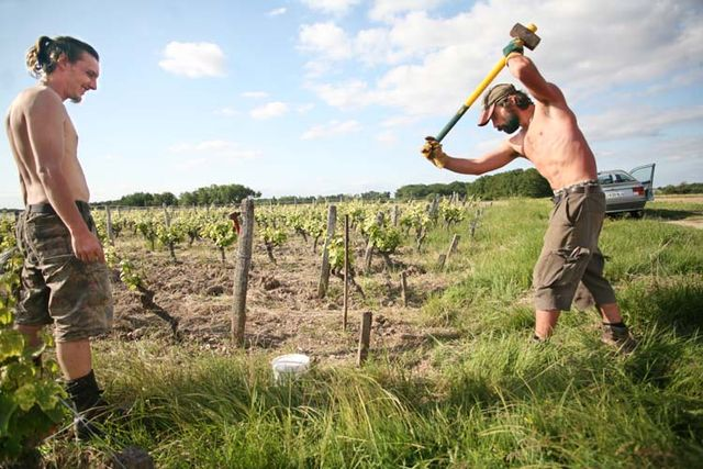 1olivier_lemasson_kevin_jean_planting_poles