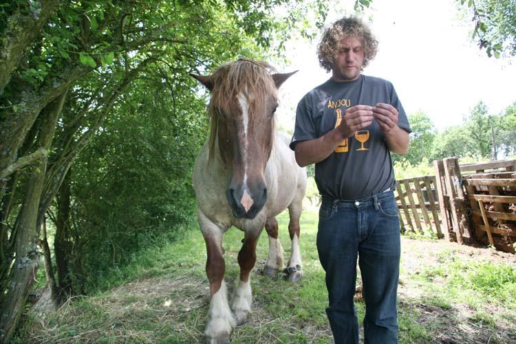 1courault_benoit_horse_rolling_cigarette