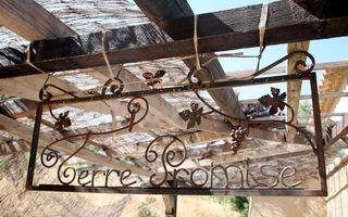 1comor_terre_promise