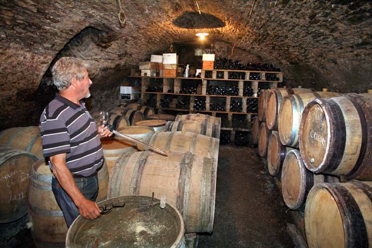 1derain_dominique_vaulted_cask_cellar