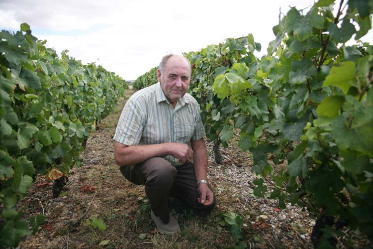 1reuilly_jacques_vincent_kneeling_vineyard