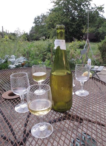 1self-bottled_sauvignon2008