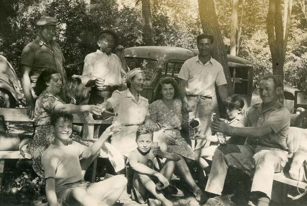 1old_wine_pics_picnic_foret_voitures2