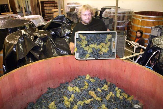 1chai_pacalet_gevrey_filling_fermenter