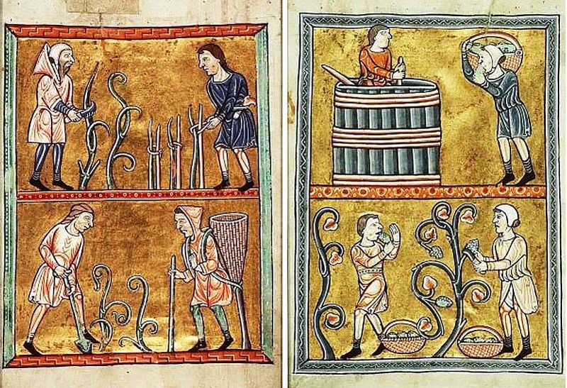 1wine_middle_ages_normandie_12eme_siecle