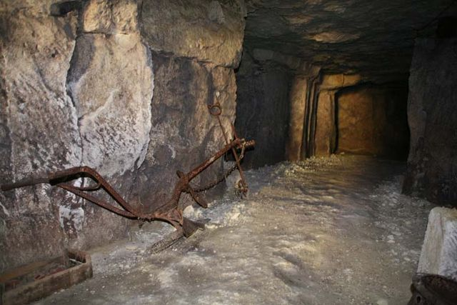 1cave_winery2_walk_plow