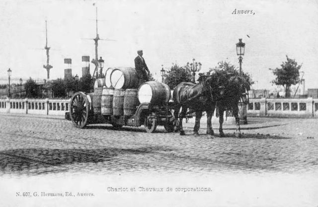1chariot_chevaux_anvers