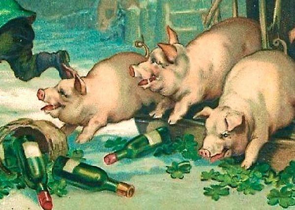 Смешная картинка свинья нажралась
