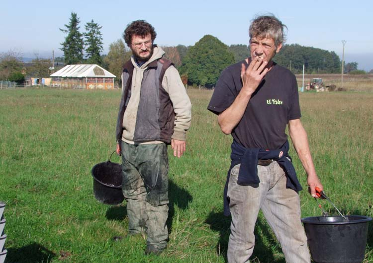 1vendange_chaussard_thomas_vineyard_workers