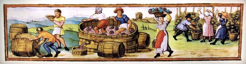 1wine_middle_ages_sept_vendanges_calendrier_ephemerides1539