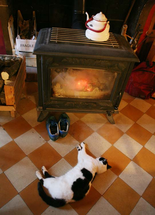 1cadette_vezelay_jean_montanet_cat_stove
