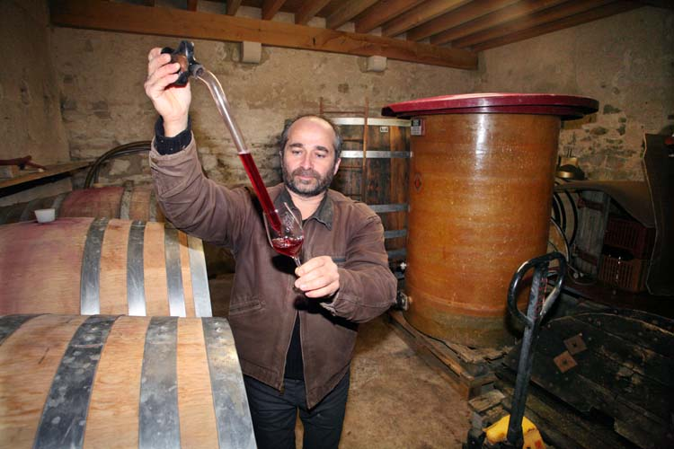 1francois_ecot_pinot_beurrot_gamay
