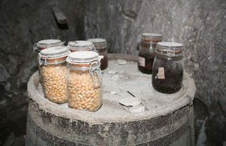 1cave_winery2_canned_vegetables2