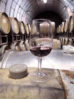 1Cocofarm_winery_cask_tasting