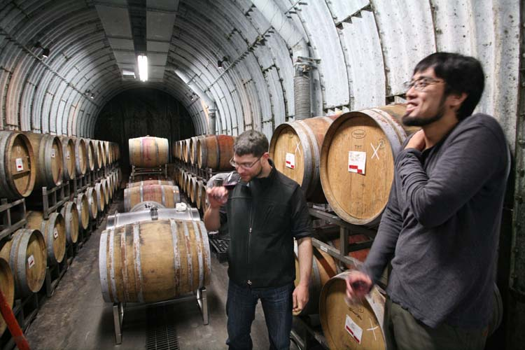 1coco_farm_winery_cask_cellar_tunnel