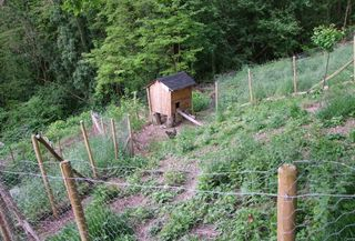 2CRB_hen_house_on_slope