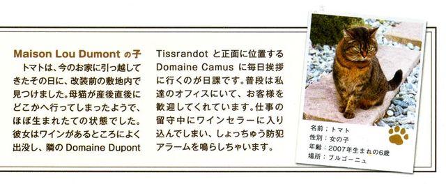 1_33.Vin_japanese_wine_magazine_cats
