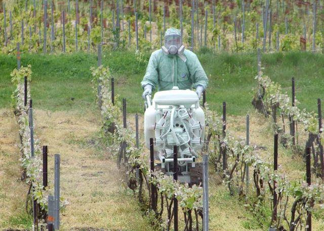 1champagne_worker_spraying_in_vineyard