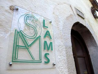 1LAMS_sign