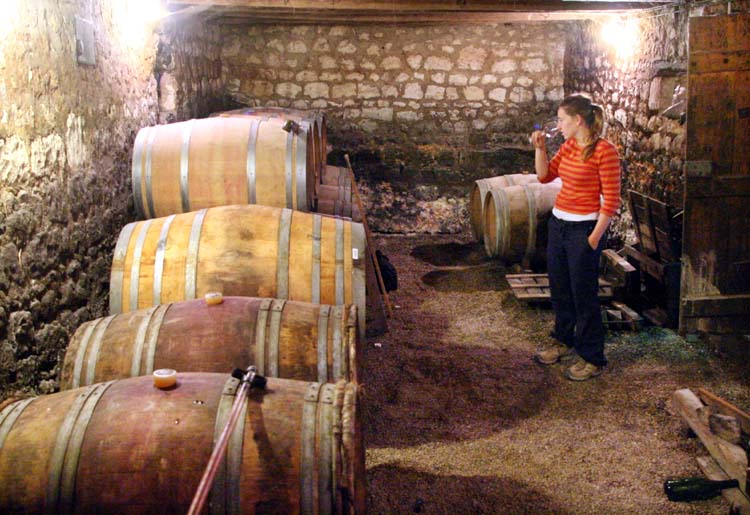 1helda_rabaut_tasting_chinon_in_cellar