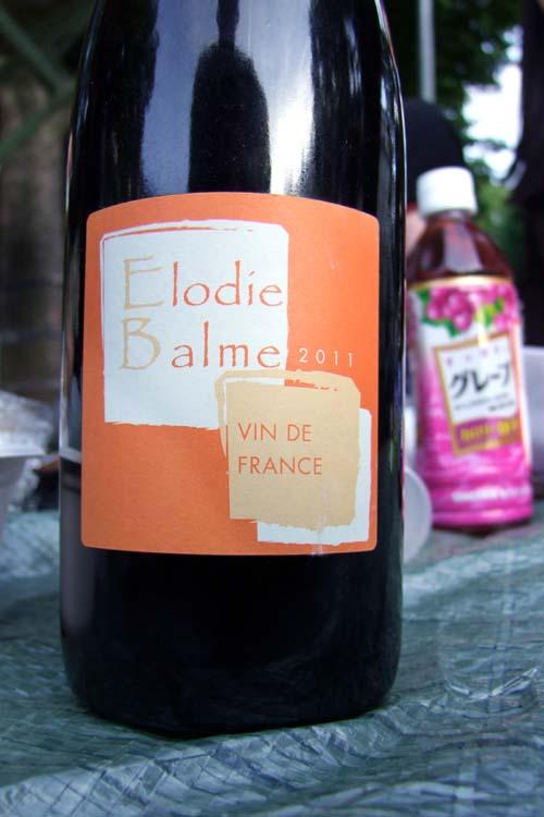 1paris_picnic_elodie_balme