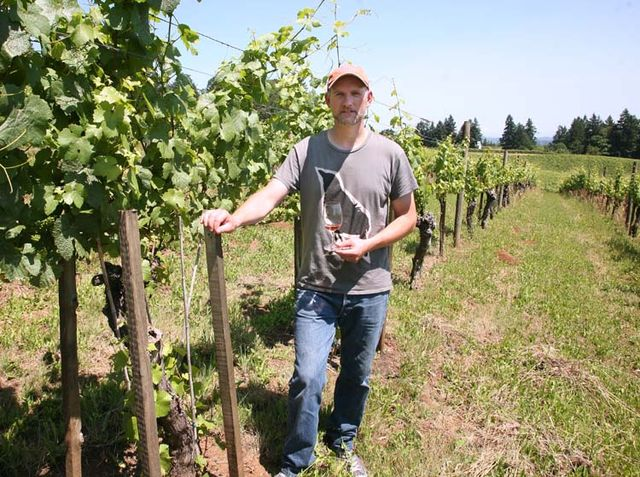 1Eyrie_oregon_first_ever_planted_american_pinot_gris1965