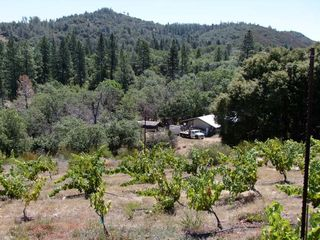 1la_clarine_hank_beckermeyer_facility_vineyard