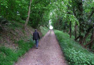 1clos_roche_blanche_didier_woods_road