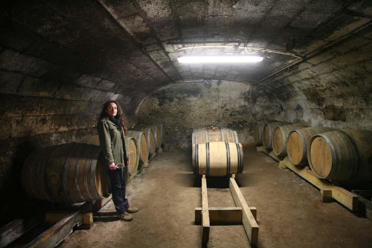 1noella_morantin_new_vaulted_cellar