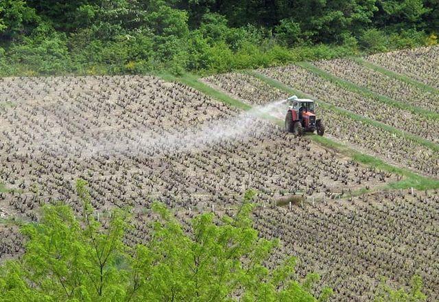 1beaujolais2013_spraying_tractor